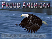 "Proud American - very closeup flying bald eagle with partially frozen blue lake in the background.  You can see the detail in every feather! ""Proud American"" wording uses USA Flag colored font."