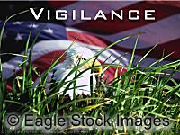 Vigilance - American Eagle peering through grass with flag background. Moving picture.